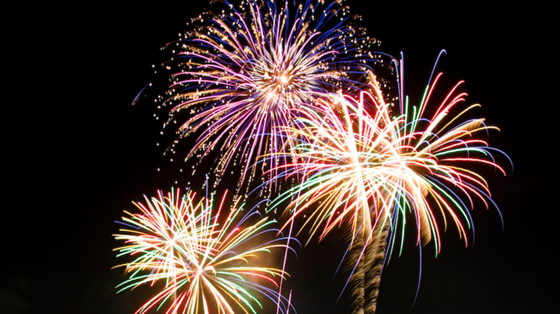 Image result for lincoln park firework display