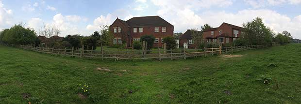 A panoramic view of the felling.
