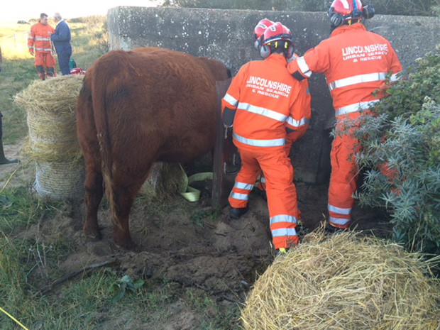 Photo: Lincolnshire Fire & Rescue