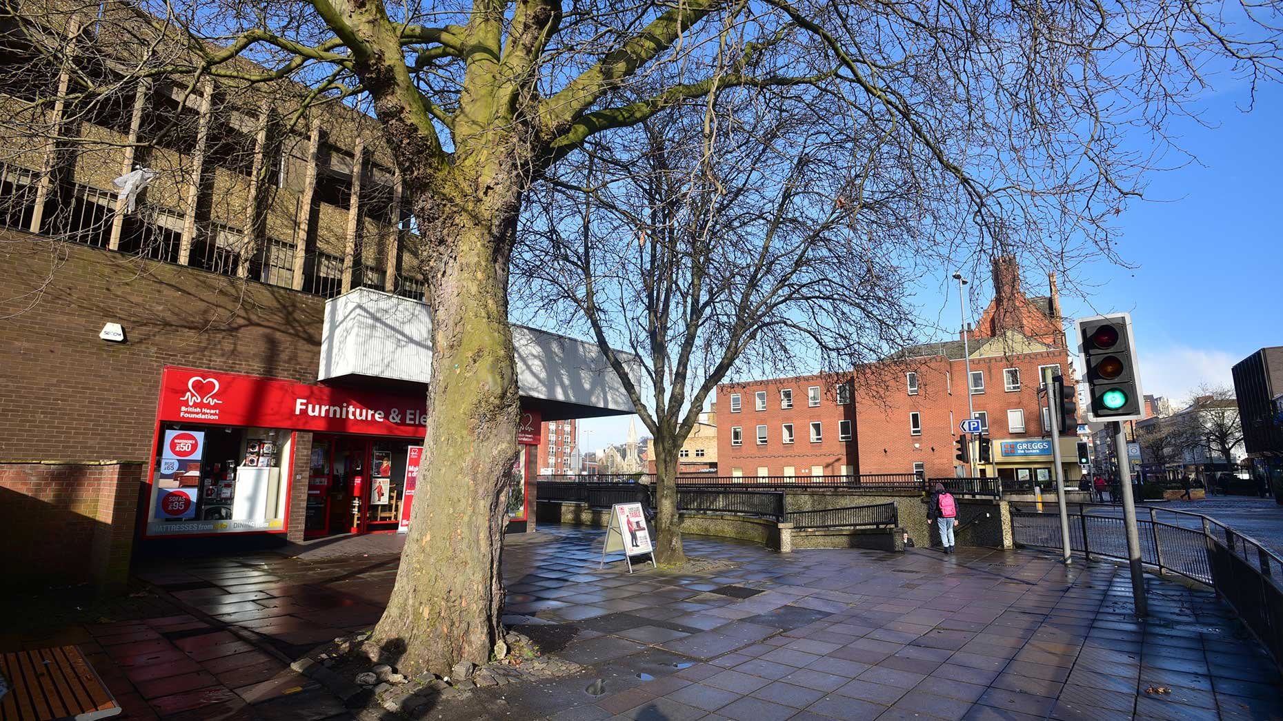Trees to be removed as part of the works. Photo: Steve Smailes for The Lincolnite