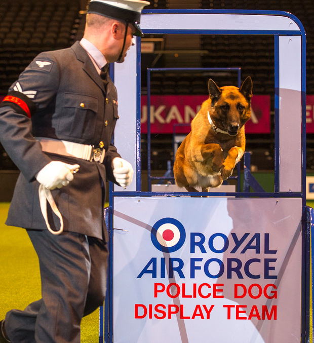 The team from RAF Waddington impressed an audience of thousands.