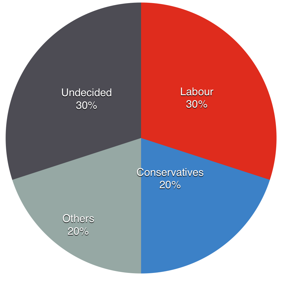 The current voting intentions of 'others' voters in 2010, of those sampled in Lincoln.