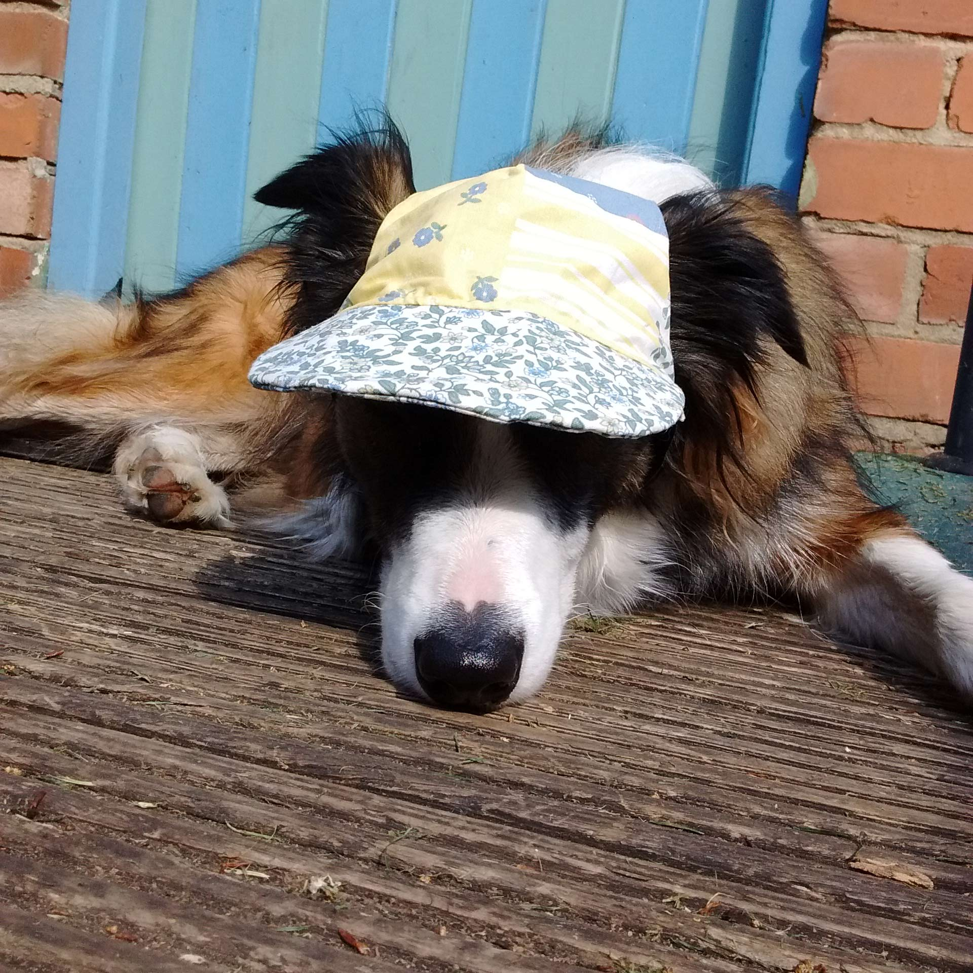Maya wears a hat in the garden to keep the harmful UV rays from her eyes.