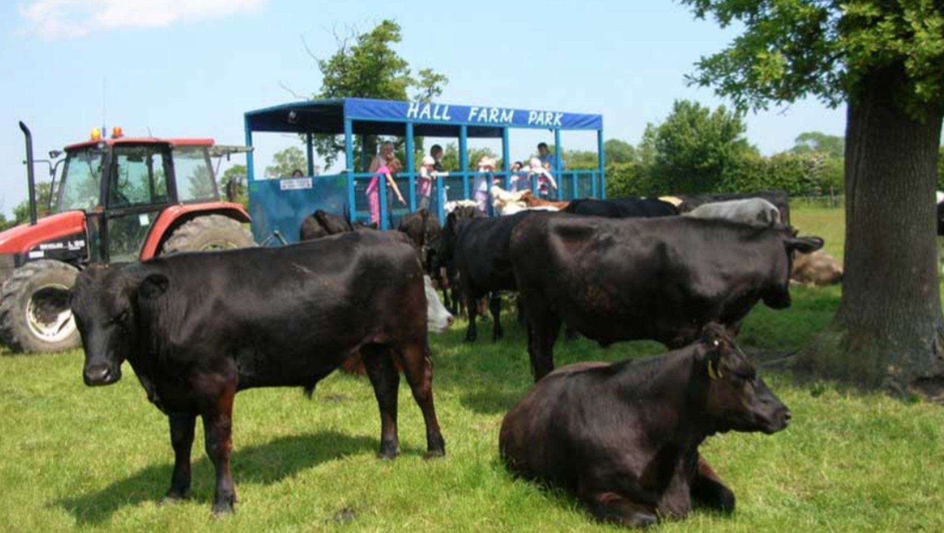 Photo: Hall Farm Park Website