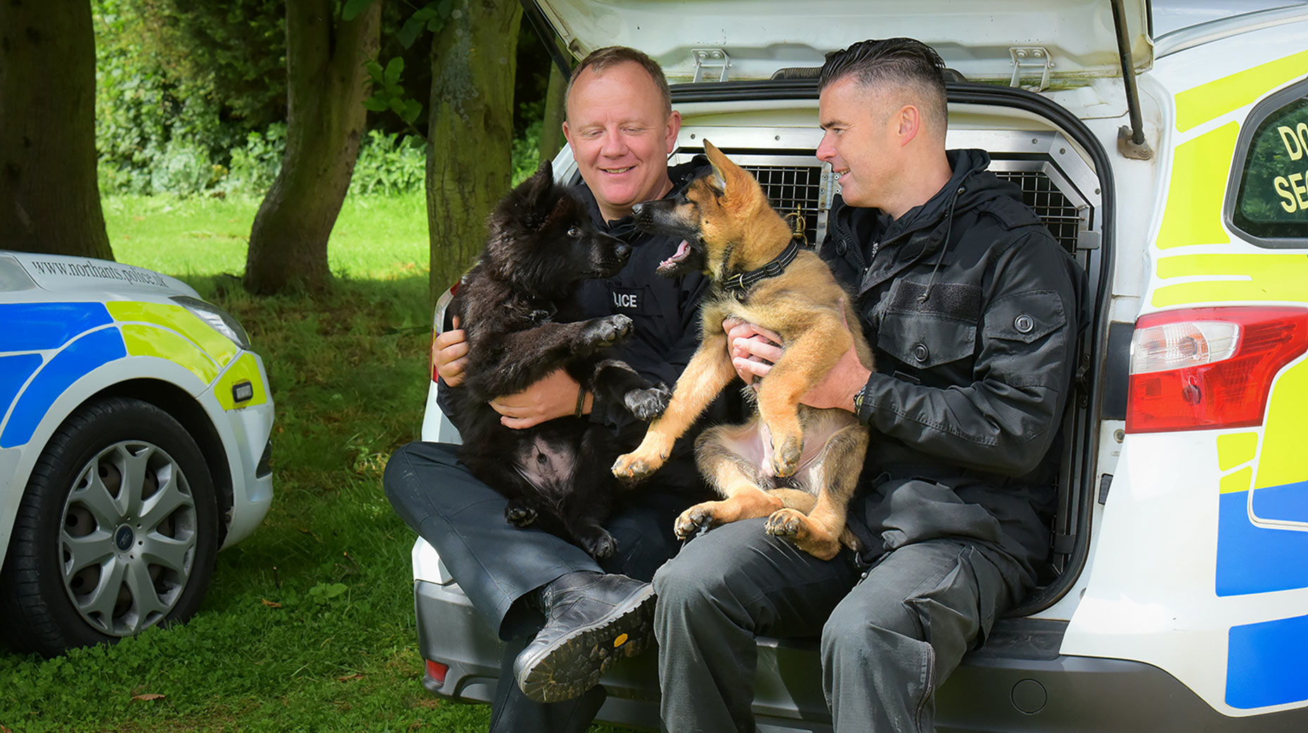 New puppy recruits PD Mac and PD Olly. Photo: Lincolnshire Police
