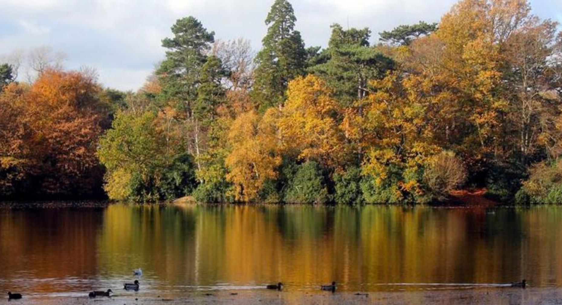 hartsholme-country-park_