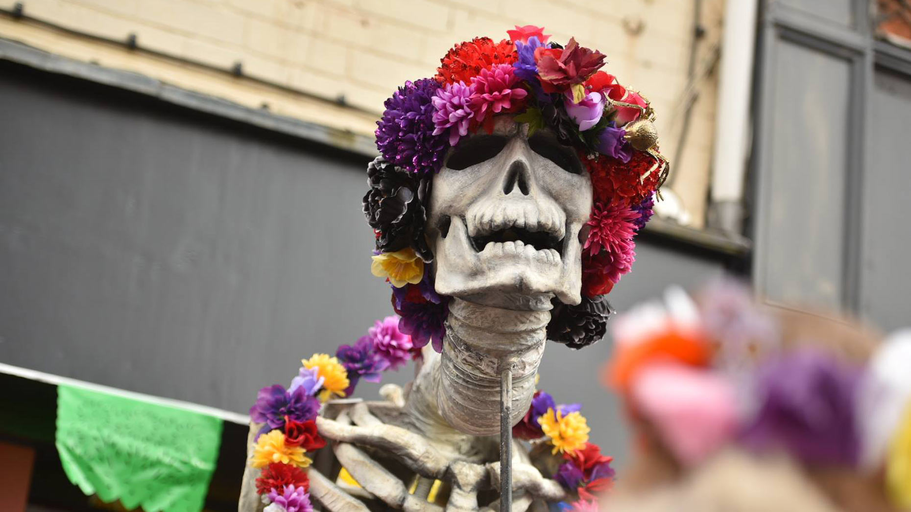 Boneshaking Halloween Day Of The Dead Parade Draws. Great White Shark Decals. Dasara Banners. Demonic Signs Of Stroke. Skin Discoloration Signs Of Stroke. Garage Decals. Timeline Facebook Banners. Sin Signs Of Stroke. Wildlife Murals